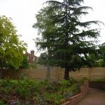 Trinity Hospice Clapham